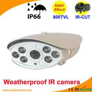 100m LED Array Sony Effio-V 800tvl Color IR CCD Camera pictures & photos