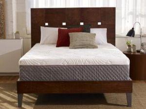 Comfortable Bedroom Furniture 12 Inch Memory Foam Mattress