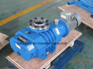 High Reliable Roots Type Blower Used for Vacuum Drying Process pictures & photos