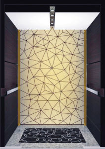 Fujizy Spacesaving Innovative Passenger Elevator with Reduction Gear pictures & photos