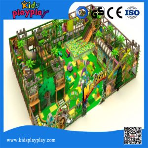 Kids Plastic Indoor Playground Equipment Soft Play Center pictures & photos