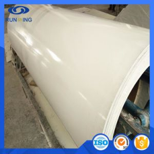 Runsing Gel-Coat FRP Panel for Truck Body pictures & photos