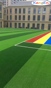 Rainbow Runway for Artificial Lawn Qds-25 pictures & photos