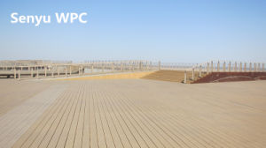 Outdoor WPC Solid Flooring (SY-05) pictures & photos