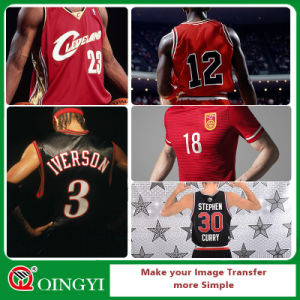 Qingyi Most Popular Vinyl Heat Transfer for Print pictures & photos