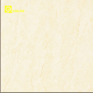 Building Material Nature Stone Ceramic Porcelain Floor Tiles Guangzhou (6NA001) pictures & photos