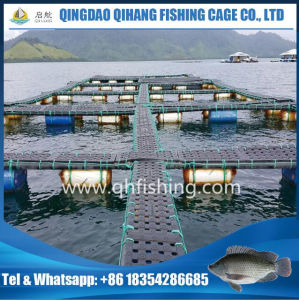 Fish Farming Cage for Catfish Breeding in Lake/Dam pictures & photos