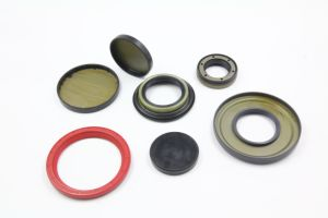 FPM SC Oil Seal/TC Oil Seal/High Pressure Oil Seal pictures & photos