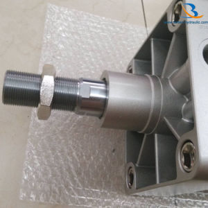 DNG Series Festo Type Standard Pneumatic Air Cylinder pictures & photos