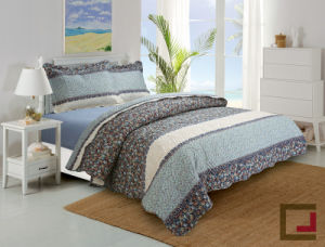 Woven Technics and King Size Ultrasonic Quilt Set pictures & photos