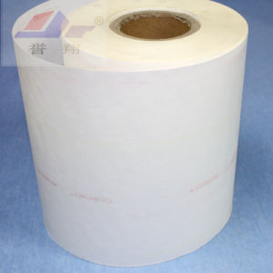 Insulation Material Electrical Insulating Paper Nmn 6640 (H/F CLASS)