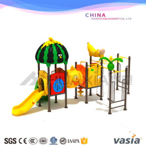 Vasia Factory Price Plastic Outdoor Playground pictures & photos
