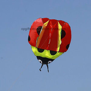 Fashion Outdoor Sports Soft Fish Shape Kite pictures & photos