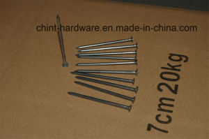 Low Price Common Nails From China Nail Factory/[Top Quality] pictures & photos
