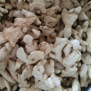 Dry Ginger Whole Faq Quality