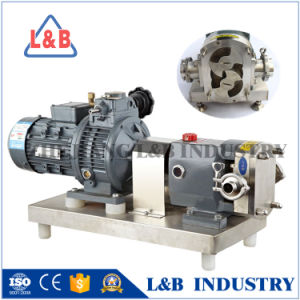 Bls-2015 Industrial Stainless Steel Lobe Pumps pictures & photos