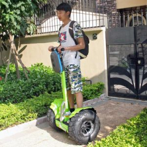 Wind Rover Strong Power Scooter Adult Electric Scooter pictures & photos