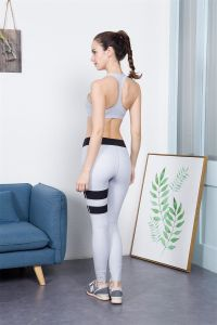 Newest Ladies Hot Fitness Yoga Pants Running Pants 2017 pictures & photos