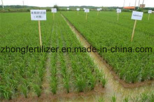 Low Price High Quality Urea for Agricultural Grade pictures & photos