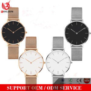 Yxl-525 Custom Luxury Stainless Steel Mesh Strap Dw Lady Watch pictures & photos