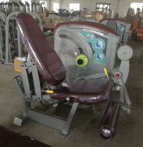 CE Approved Nautilus Gym Equipment / Lateral Raise (SN04) pictures & photos