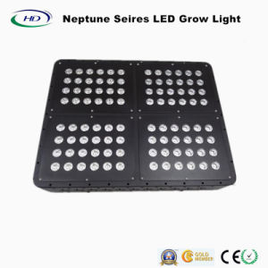 Neptune 4 LED Grow Light for Green House and Medicine pictures & photos