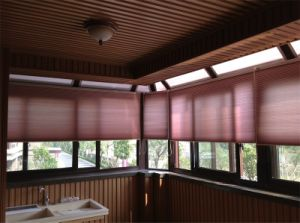 Top Down Bottom up Honeycomb Shades Curtains Horizontal Blinds pictures & photos