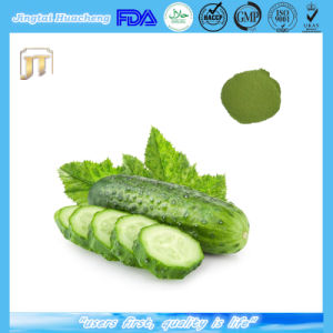 100% Natural Freeze-Dried Cucumber Powder 10: 1 20: 1 pictures & photos