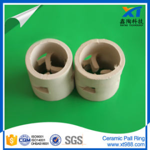 High Acid Resistance Ceramic Pall Rings pictures & photos