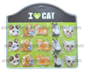 Pet Cats Magnet pictures & photos