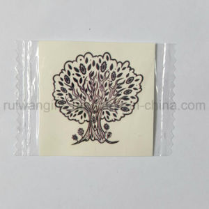 Coulurful Cute Designs Body Skin Safe Temporary Tattoo Sticker pictures & photos