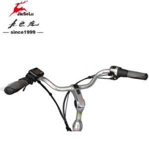 700C Al Alloy Frame 250W Brushless Motor City E-Bicycle (JSL036B-6) pictures & photos