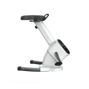 Home Use Adjustable Workout Trainer Magnetic Exercise Bicycle Cardio Exercise Bike