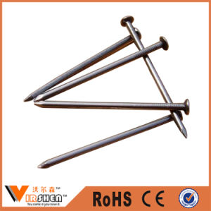 China Galvanized Common Iron Nail for Construction pictures & photos