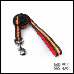 Personalised Extendable Elastic Pet Dog Puppy Leads with Padded Handle pictures & photos