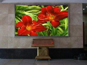 Indoor P10 LED Screen (1/8 scan) pictures & photos