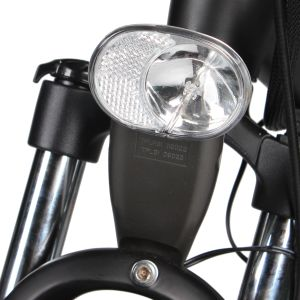 Hot Sale Ce En15194 Electric Bike Made in China pictures & photos