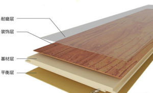 Laminate Outdoor Plastic Covering Roll Flooring pictures & photos