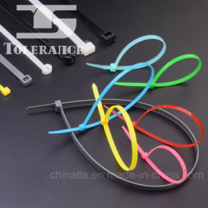 Plastic PA66 Nylon Cable Ties pictures & photos