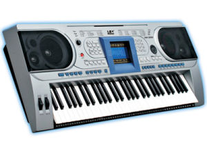 Electronic Keyboard (Electronic Organ) (MK-900)