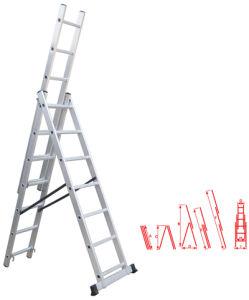 Extension Ladder (TRK-E307)