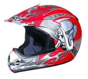 Motorcross Helmet Wlt-121