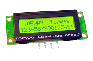16X2 Character LCD Module Alphanumeric COB Type LCD Display (LMB162X) pictures & photos