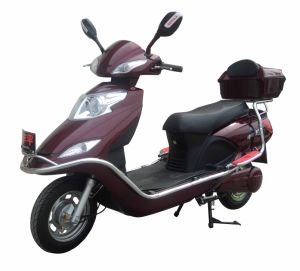 Electric Scooter (FPE-011)