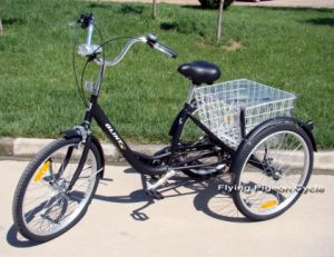 6speed Cargo Trike Shopping Tricycle (JG-M-004) pictures & photos