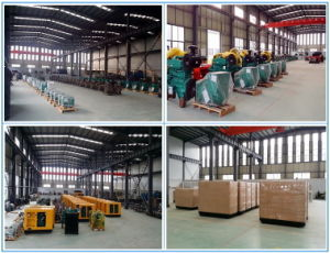 30kw Factory Sale 50/60Hz Electric Generator Set pictures & photos