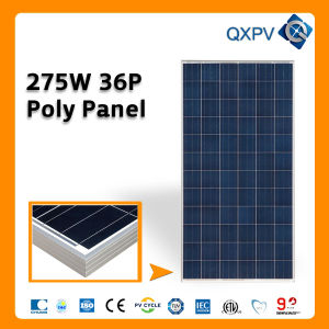 36V 275W Poly Solar Panel pictures & photos