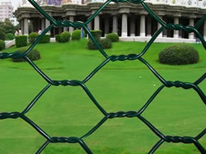 Low Price Hexagonal Wire Fence H0148 pictures & photos