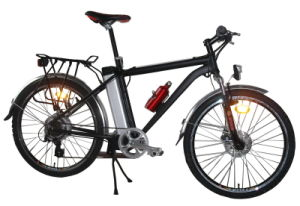 Electric Bicycle (TDE-601ZH)