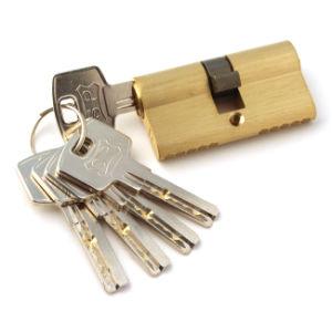 Brass Cylinder Lock, Zinc Alloy Cylinder Lock (AL-900) pictures & photos